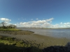river-forth-from-s-alloa-to-ochils